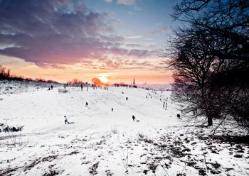 Mousehold Norwich in the Snow