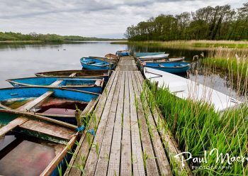 Ormesby Little Broad